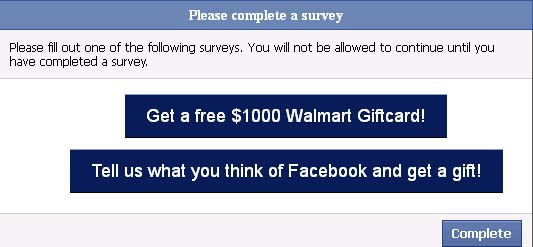 her_life_over_survey_facebook_scam