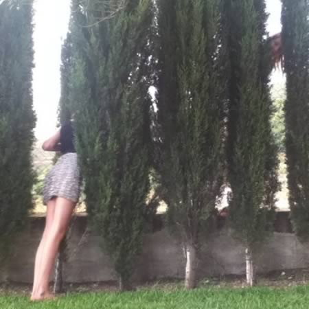 horsemaning_10-plants