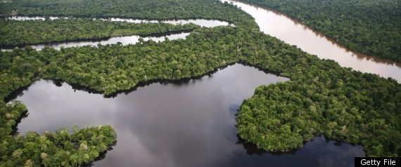 Google StreetView Is  Mapping The Amazon