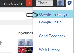 Google+ setting for Email Notification