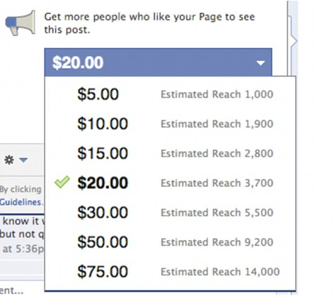 facebook pay to post review